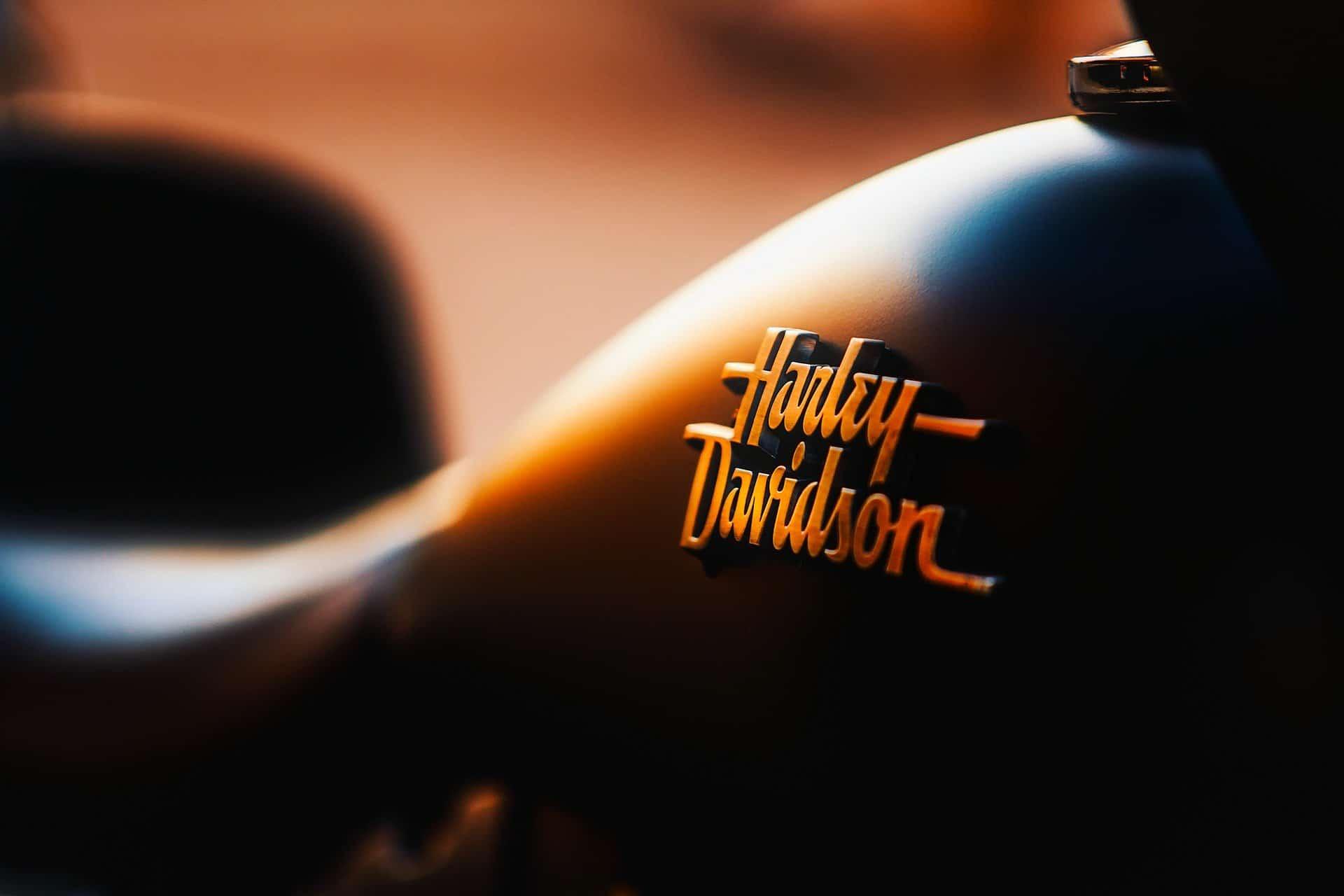 harley davidson logo close-up